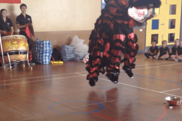 Chinese lion dance incursion 1